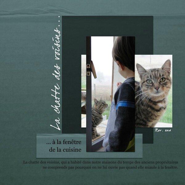 14-11 la chatte des voisins