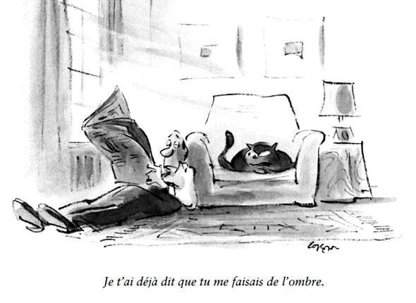 the-new-yorker-lhumour-des_5-diaporama