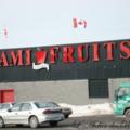 Sami fruits