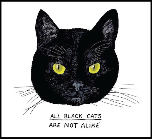 tous les chats noirs ne sont pas semblables
