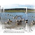 En hiver lac de remoray