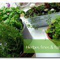 Herbes fines & folles