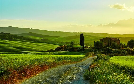 Italy-Tuscany-beautiful-landscape-fields-road-grass-trees-house_m
