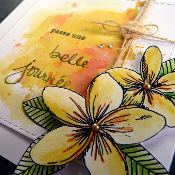 fleur_jaune_detail