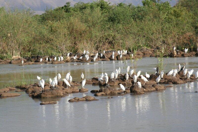 photos ethiopiedjibouti 035