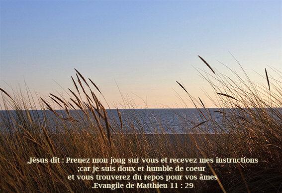 verset_biblique_mer
