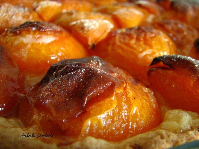 photo du mois mars abricot