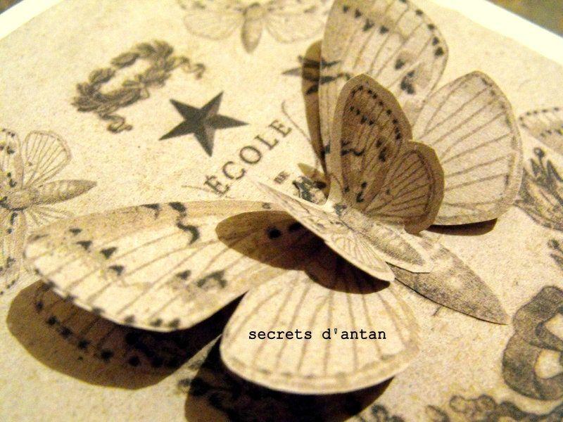 SECRETS DANTAN 018