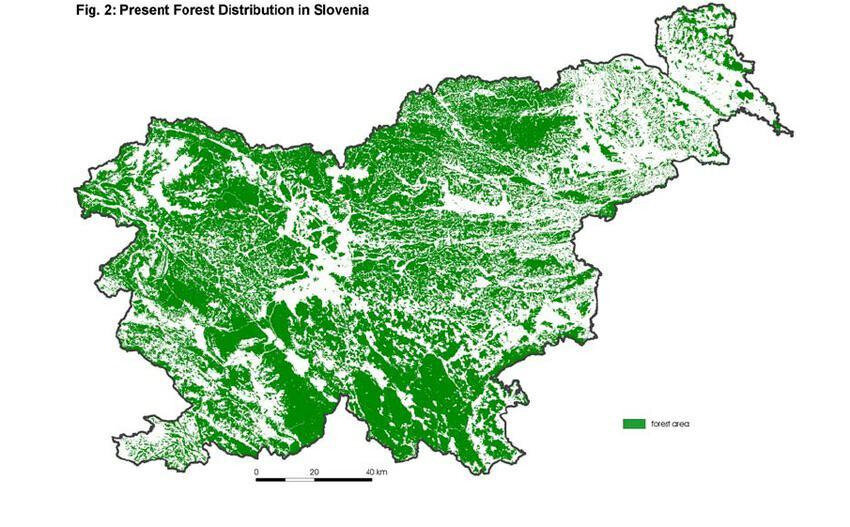 Forest cover map of Slovenia