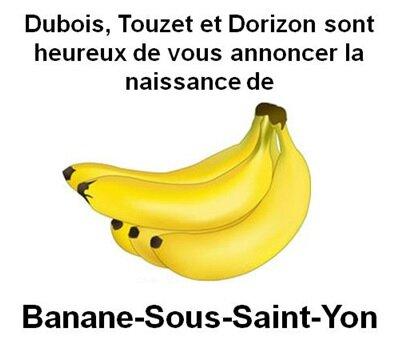 Banane sous Saint Yon