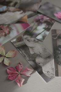 minicard_022