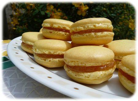 Macarons___l_ananas