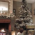 Windows-Live-Writer/Christmas-tree_1116B/DSCN3588_thumb