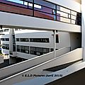 IMG_2455a