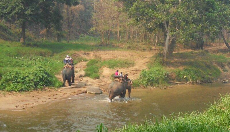 Thailande 19 mars 2014 178