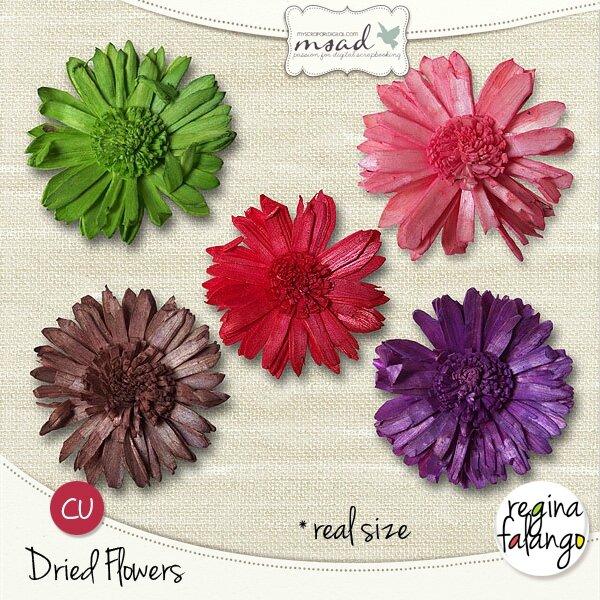 rf-driedflowerspv