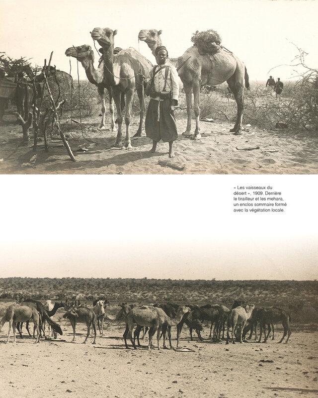 vaisseaux du désert, 1909