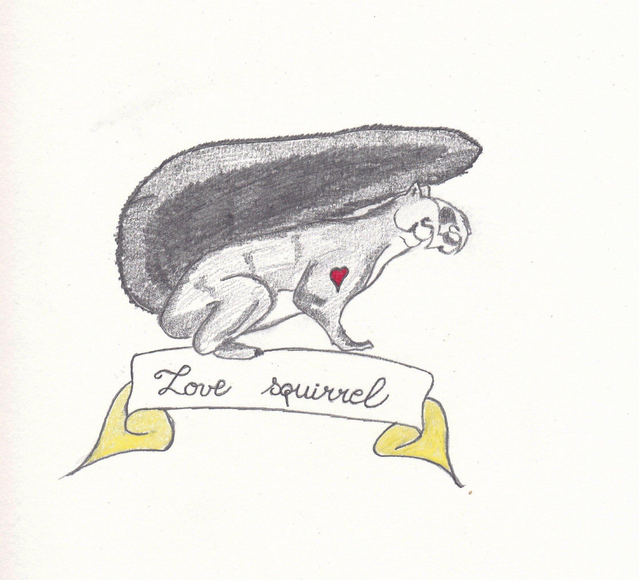 love squirrel