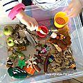 Notre bac sensoriel d'automne [activité montessori]