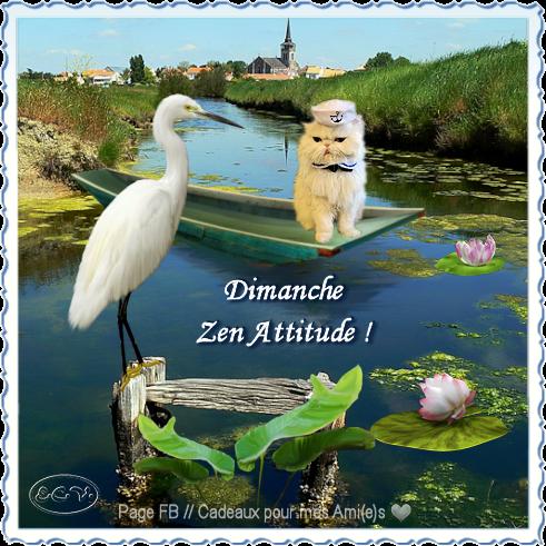 7 b d ZEN attitudeBPat19