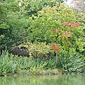 Un lieu ... un lac en septembre