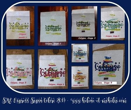 calypso_sapin coloré_col3