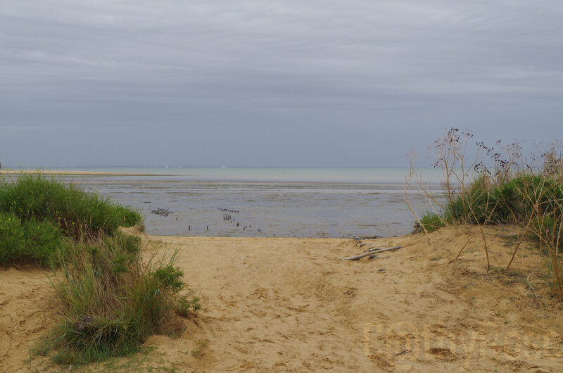 plage Fort Royer (1)