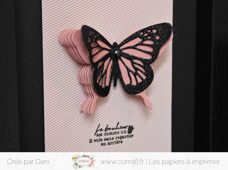 Dani Basile 09 zoom cadre papillon Com