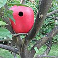 nichoir calebasse pomme birdhouse calabash apple lilybouticlou