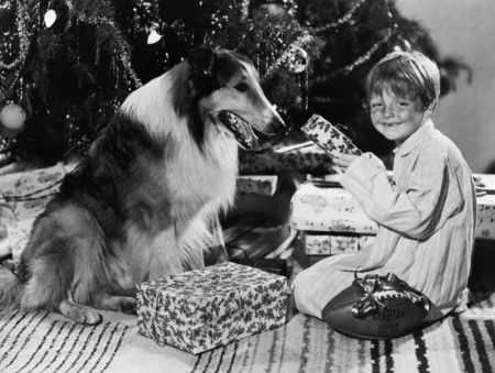 Butch_Jenkins_and_Lassie_at_Christmas