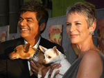75280_video_667861_beverly_hills_chihuahua_premiere_los_angeles