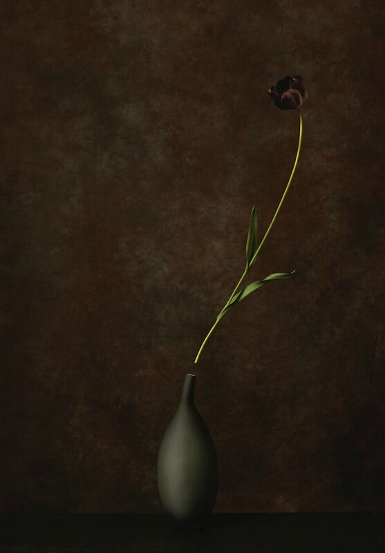 marie-cecile-thijs---black_med_hr-3