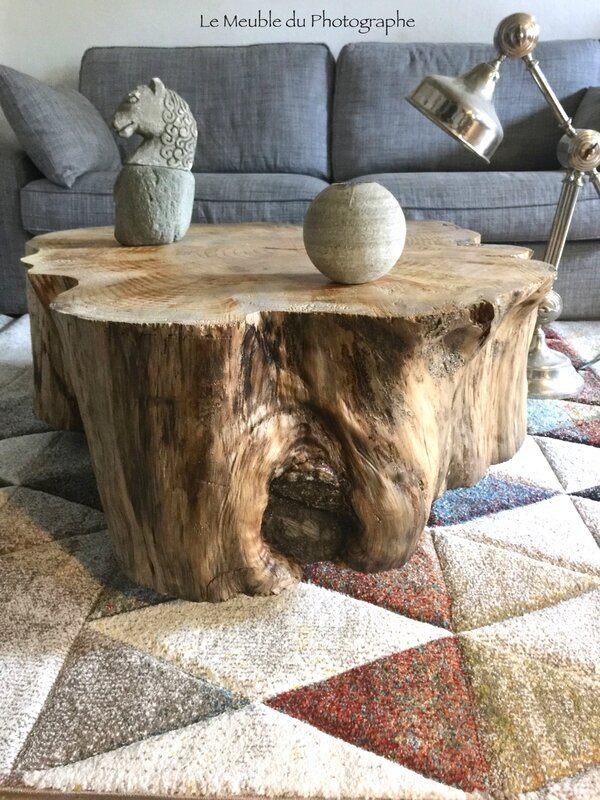table basse grand tronc sur roulettes