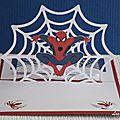 Spiderman pour un anniversaire