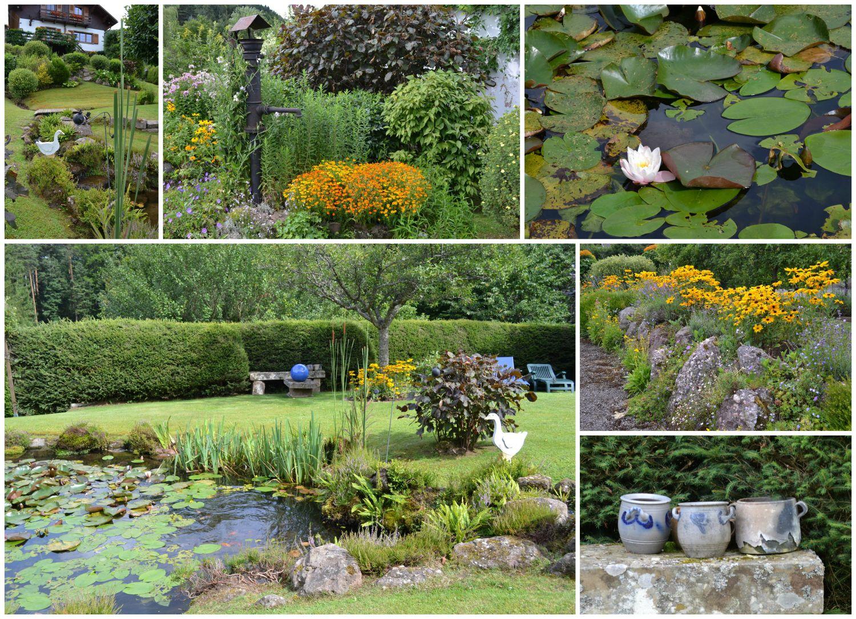 Un jardin de montagne dans les vosges alsaciennes carnets de jardin - Jardin de montagne ...