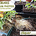 9 mars - album photos de mars-tous mes petits secrets photographiés