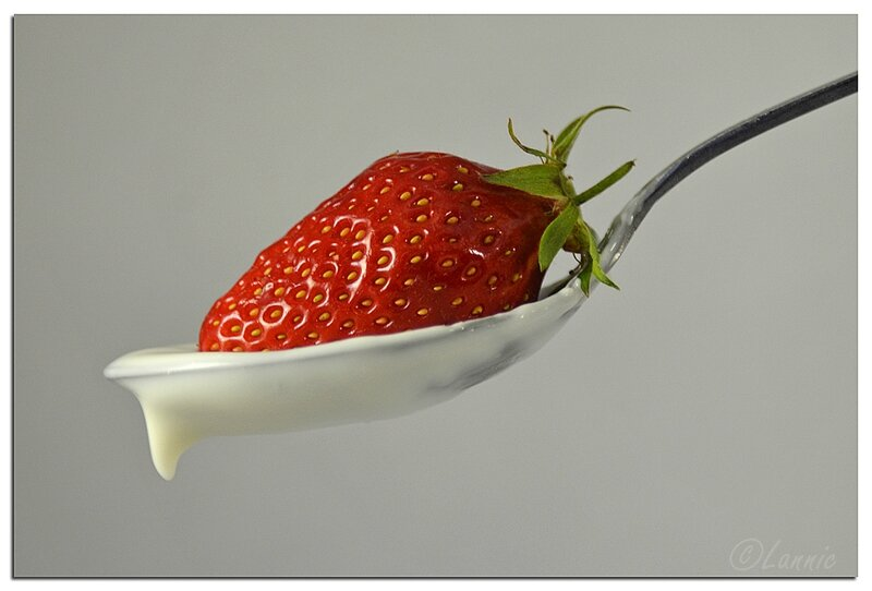 Macro_fraise_creme