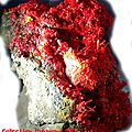 Realgar St Pierre ,Collection raymond 2007