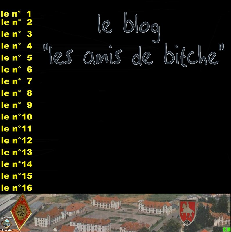 _ 0 BITCHE 8010b