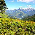Vallée d'Aspe et massif du Pic de Sesques et du Permayou...