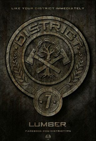 Hunger-Games-affiche-District-7