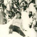 De la neige, des sapins...