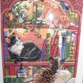 chats dans la bibliothéque