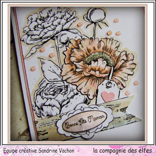 Carte fleurie FETE DES MERES dt LCDE (3)
