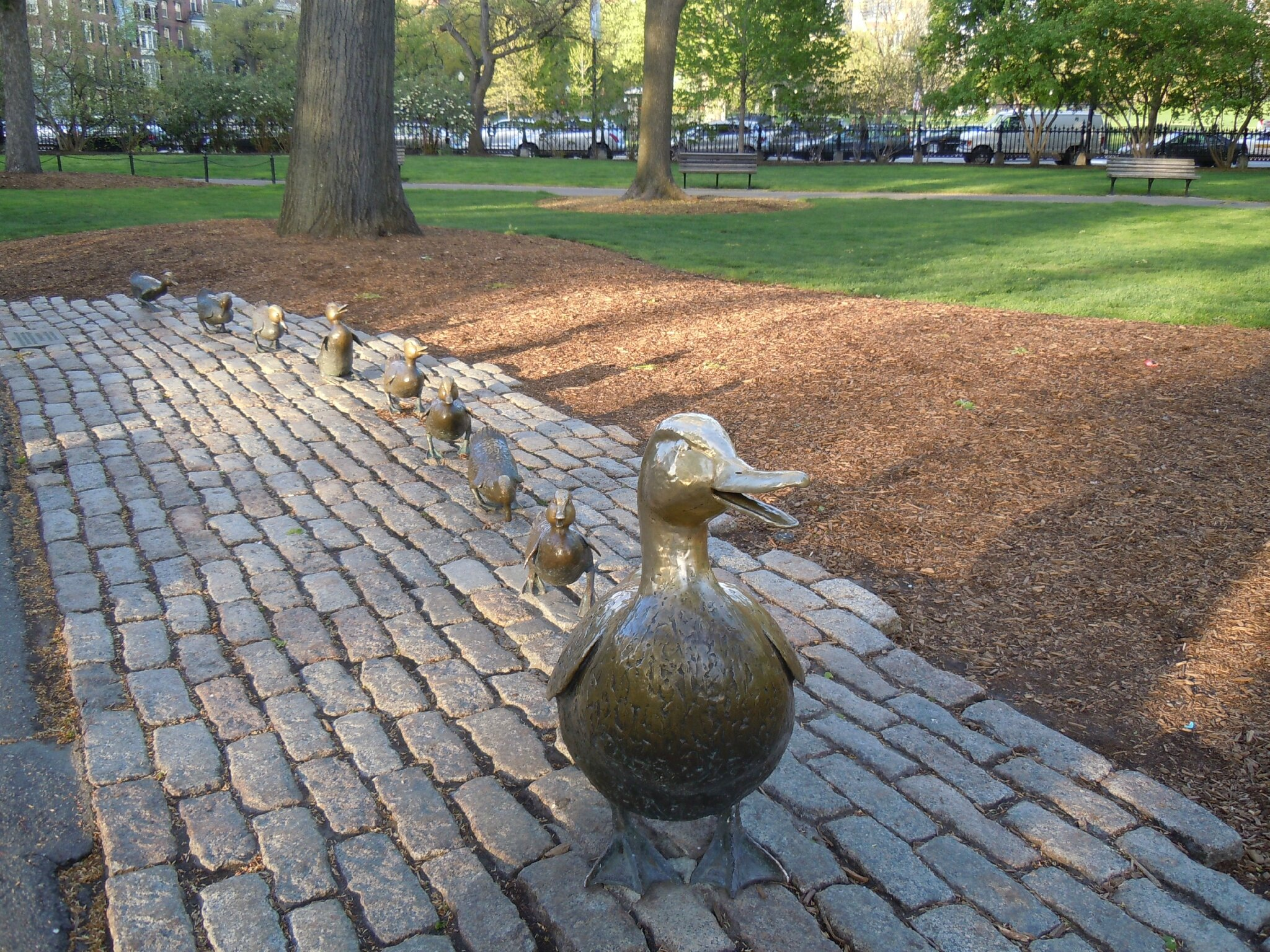 BOSTON COMMON PARK (128)