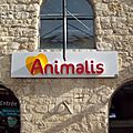 Dog-friendly place : animalis - cour saint-emilion