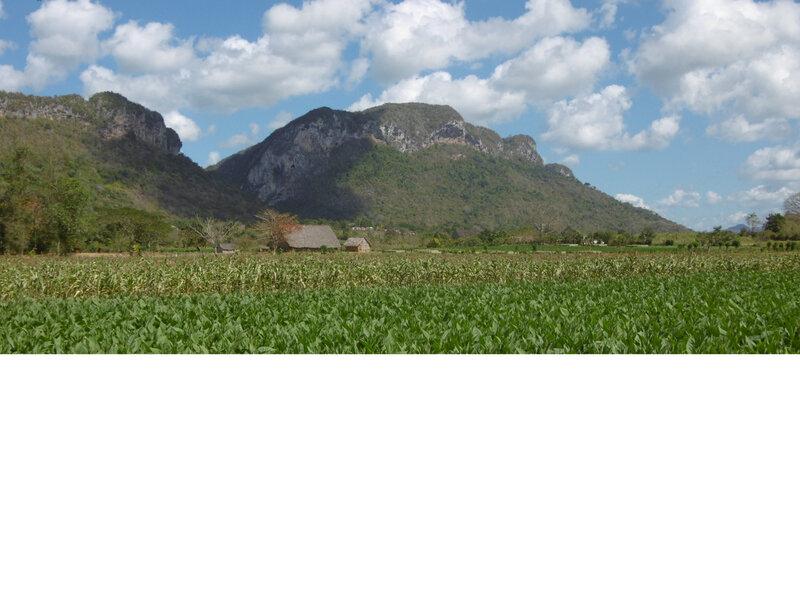 Vallée de VINALES (52)