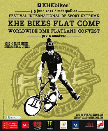 Flat_Fise_2011