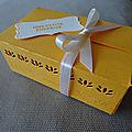 Un paquet parfait en mélodie de mangue