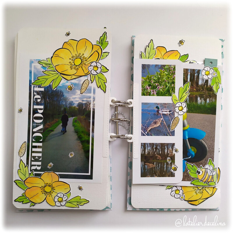 2020 05 - Album printemps Page 6